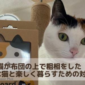 猫が布団の上で突然粗相を始めた。そんな猫のしつけを諦めたらやる4つの対策