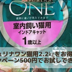 ピュリナワン猫用ドライフード2.2㎏をお得なキャンペーン ワンコイン500円でお試しできます