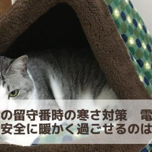 猫の冬の留守番時の寒さ対策 電源なしで、安全に暖かく過ごせるのはこれ