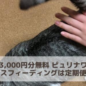 初回3,000円分無料 ピュリナワン猫ミックスフィーディングは定期便がお得