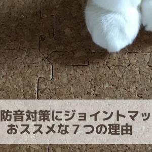 猫の防音対策にジョイントマットがおススメな7つの理由 猫の走る音は階下に響く