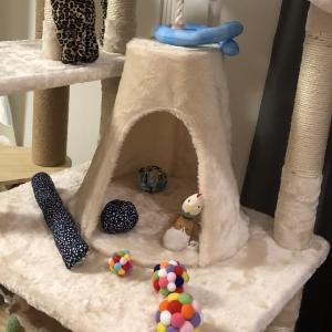 【おすすめ】猫ちゃんが喜ぶ キャットタワー【据え置き】