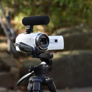 チンチラ用のペットカメラおすすめ4選!設置方法や注意点もご紹介!