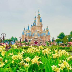 ついにきた!上海ディズニーランド!~園内ウロウロ編。~