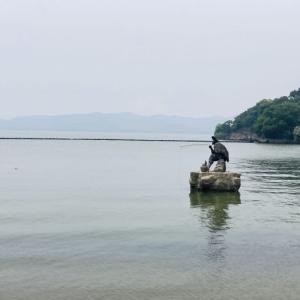 端午節に行ってきた!無錫へ小旅行!④~太湖仙岛編~