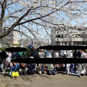 0324桜