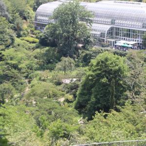 高知城と牧野植物園②