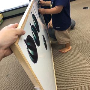 【2歳・3歳・年少・年中】 入園入学準備 思考力クラス の詳細