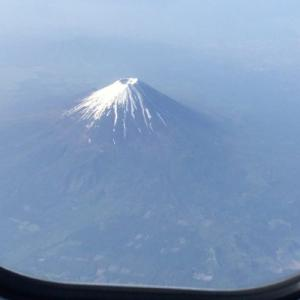 【東京解禁】go to トラベルで簡単に国内格安旅行を予約しよう!
