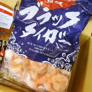 【ふるさと納税】高級ブラックタイガー1kgはかなりおすすめ♪(福井県駿河市)