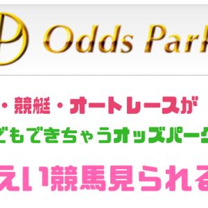 いつでも100円~公営ギャンブル!!~【オッズパーク】のススメ~