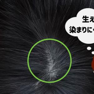 白髪染めカラートリートメントはなぜ染まらない?よく染まる方法伝授!