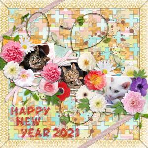 .:*:・'゜★゜'・:*Happy New Year 2021.:*:・'゜☆
