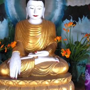 【ミャンマーにマインドフルネス瞑想が登場してきた経緯2】2種類ある仏教の瞑想