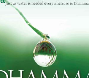 【ダンマはどこにでも】Dhamma Everywhere 日本語版公開