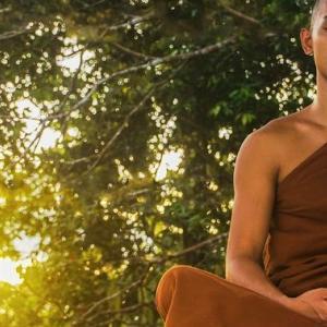 【実践!マインドフルネス瞑想8】煩悩の観察