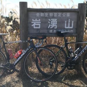 ロードバイクで岩湧山に登ったらススキと紅葉が最高だった。