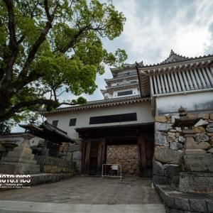 fumoto pics #5 今治城のお堀はサメが泳ぐ!?現代に蘇る天守とお堀の謎