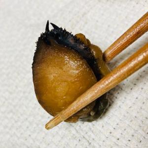 【高知】旬の地物をぜいたくに使用!ナガレコとツベタカの煮物