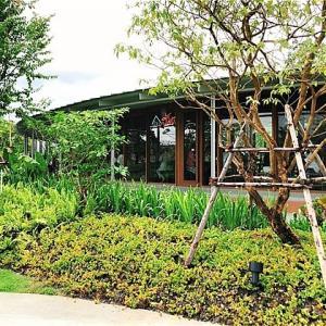 バンナーにオープンした人気タイ料理店「Baan Somtum(バーンソムタム)」