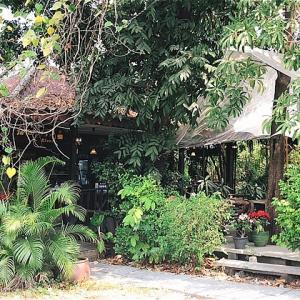 ラックラバン通りのタイ料理店「Nisara」でカオソーイ