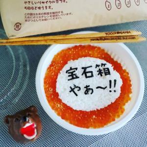 #食べらさってる いくら丼弁当☆☆☆北海道米も北海道グルメ最高!宝石箱やぁ~!!