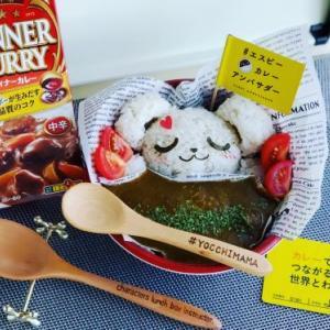 夏野菜カレー弁当☆♪夏休みごはん☆