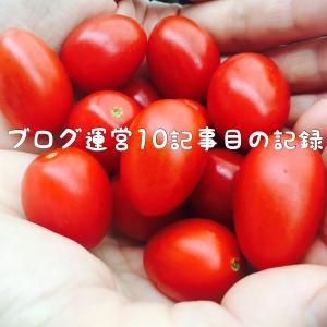 ブログ運営10記事目の記録/PV数,収益はいかに!?