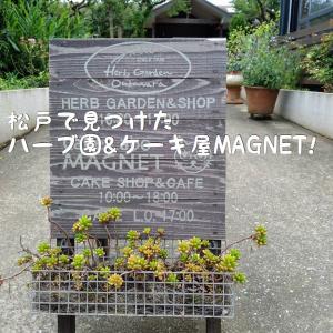 大川原ハーブ園とMAGNET(ケーキ屋)in市川