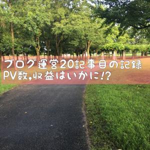 ブログ運営20記事目の記録/PV数,収益はいかに!?