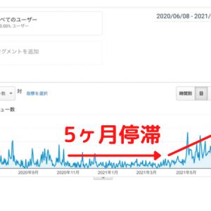 ブログ運営40記事の記録【pv数・収益はいかに?】