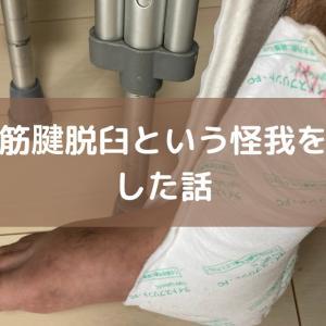 足首腓骨筋腱脱臼という怪我をして手術した話