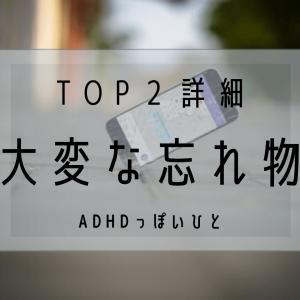 大変な忘れ物 【TOP2】~詳細~