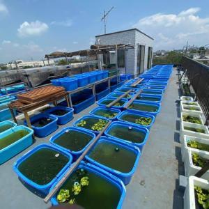 池・水槽667本の飼育場写真25枚