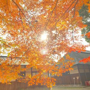 平川市「盛美園」