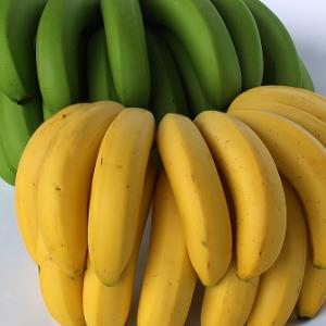 バナナ豆知識