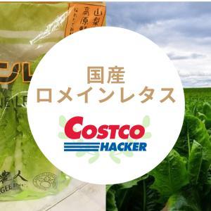【コストコロメインレタス】加熱しても美味!サラダ以外にアレンジ