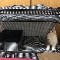 ペット用の避難用具