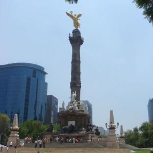 【紅の血は燃ゆる】メキシコのウキウキ!最新ニュース5選【2021/8】