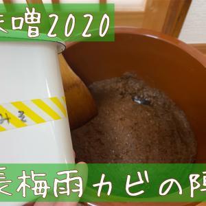 味噌2020〜長梅雨カビの陣〜
