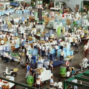 【大田区】大田市場で初のコロナ感染者が判明、業務への影響は。