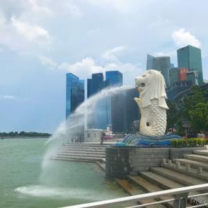 【2017年シンガポール旅行記⑩】最終日の夜はチリクラブとマリーナベイサンズのショー