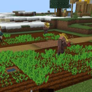 【マイクラ】【Switch/PS4】村を守る2つの方法