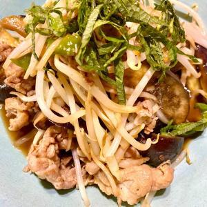【節約レシピ】豚肩肉とナスとピーマンの炒めもの ★ ジャガイモの甘から煮
