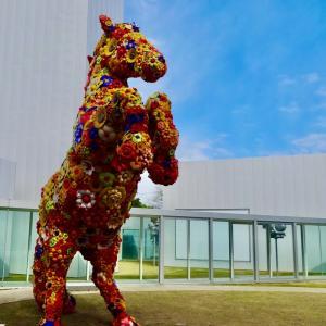 十和田市現代美術館 驚きの現代アートがいっぱいの美術館(青森) ★★☆
