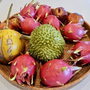 【必ず食べたい!!】タイのおいしい果物 6選を紹介!【タイ語で言えるかな?】
