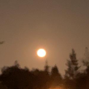 フルムーン(満月)に名前が付いている