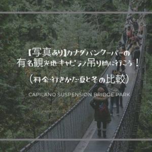 【写真あり】カナダバンクーバーの有名観光地・キャピラノ吊り橋に行こう!(料金・無料シャトルバス・夏と冬の比較)