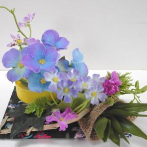 ドールハウスの紫陽花の出荷