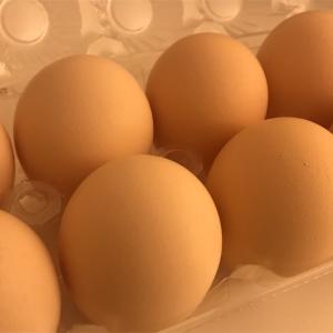 きもちを込めて卵料理